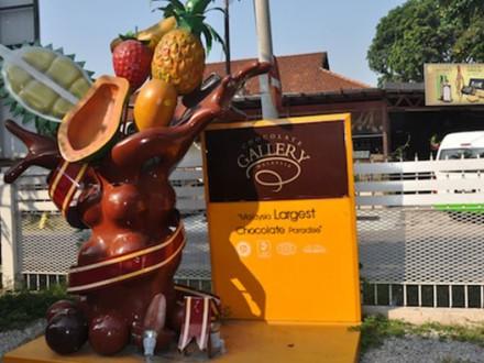 Malaysian-Chocolates-1