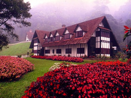 cameron-highlands-1
