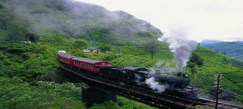 NUWARA ELIYA SCENIC TRAIN RIDE